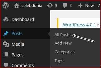 All-posts-option-in-wordpress