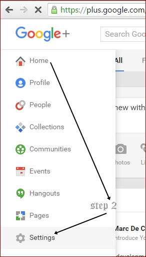 Google plus profile settings