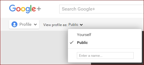 Seeing Google plus profile as Public