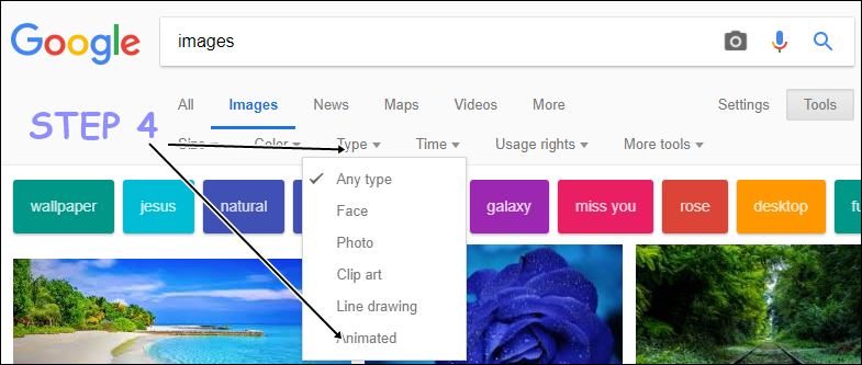 select animated type image search image